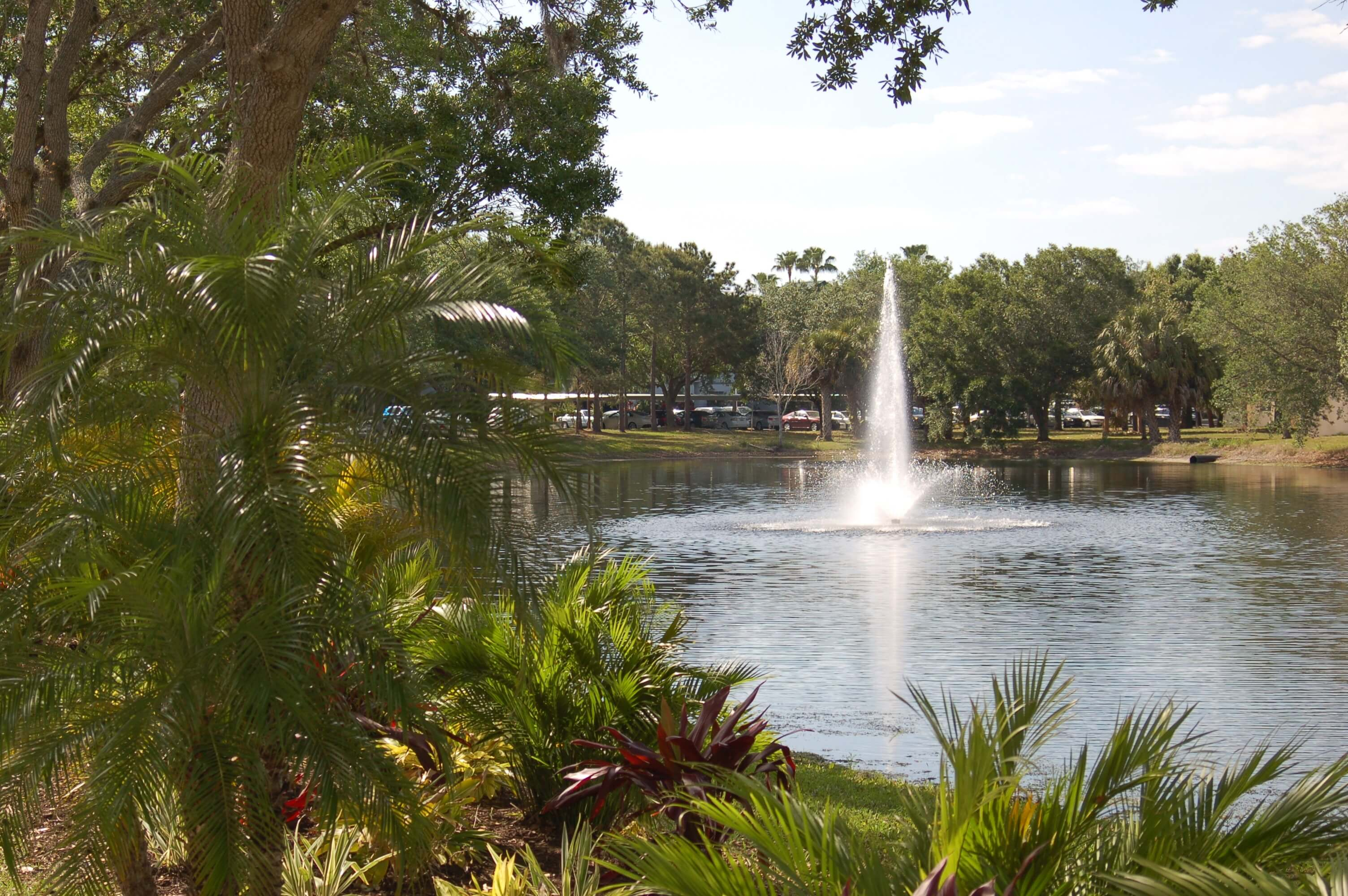 Sarasota Experience ~ Aviva - A Campus for Senior Life